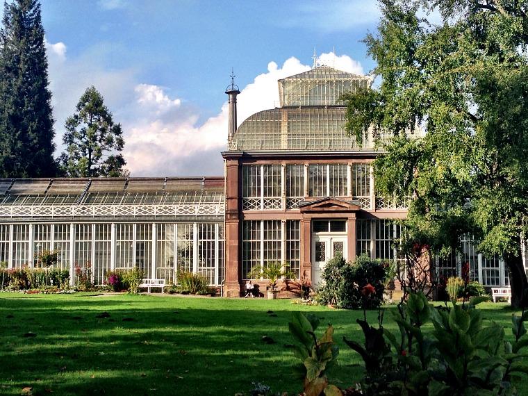 germany-kassel-greenhouse