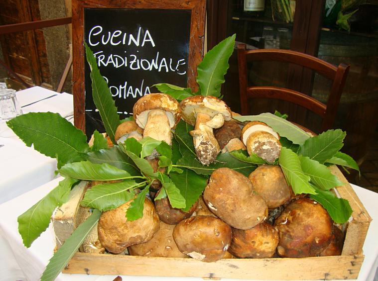 italy-rome-mushroom