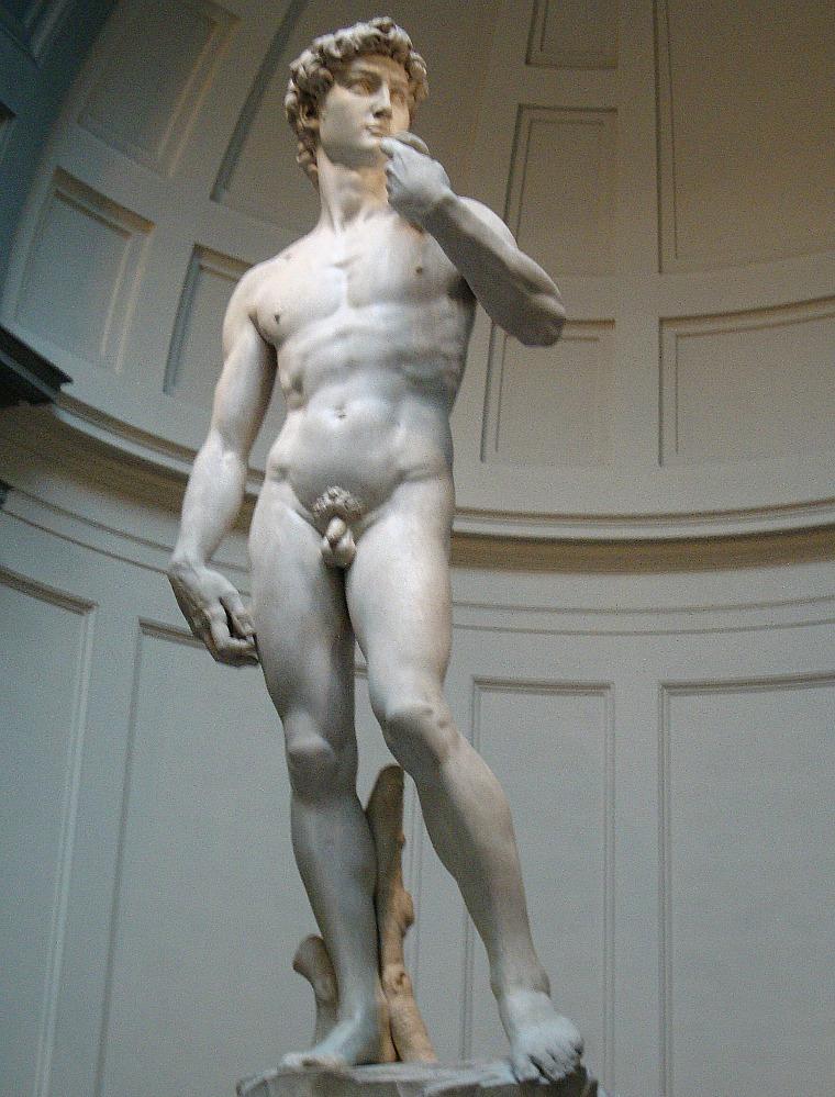 The David. florence