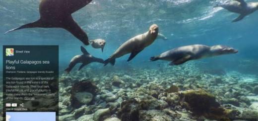 galapagos islands street view google