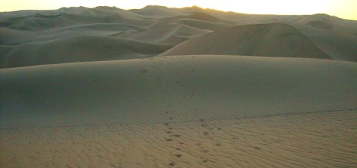 peru-huacachina-dune