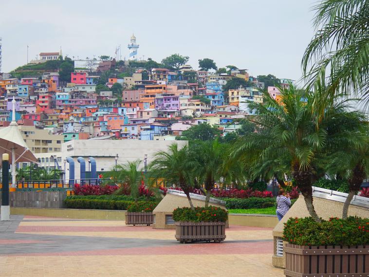 ecuador-guayaquil-landscape