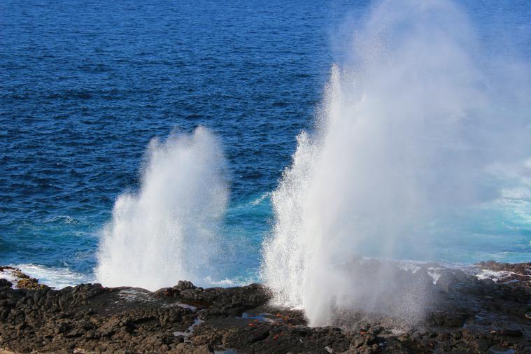 galapagos islands espanola