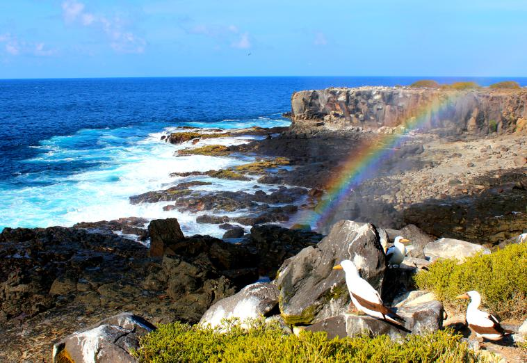 Espanola. galapagos islands rainbow