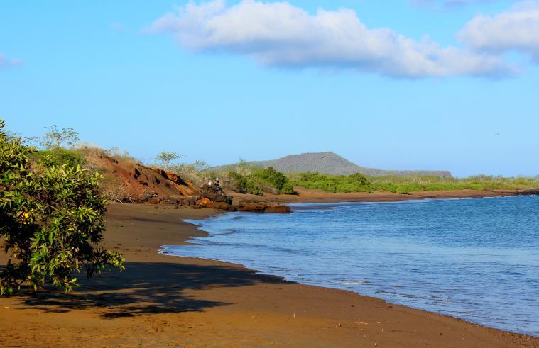 Floreana. galapagos islands floreana