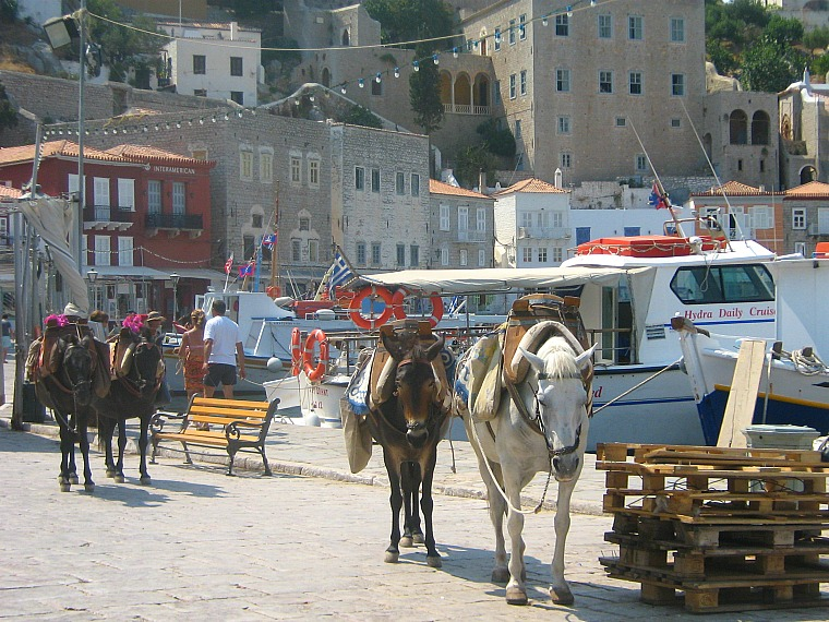Donkeys near the harbor in Hydra, Greece.