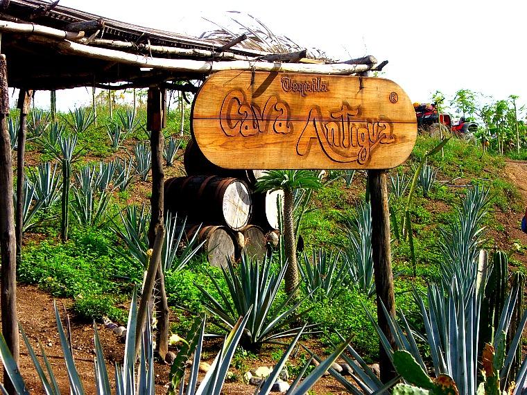 Cava Antigua.