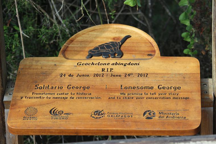 lonesome george galapagos memorial charles darwin
