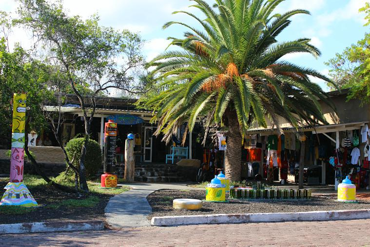 galapagos santa cruz puerto ayora