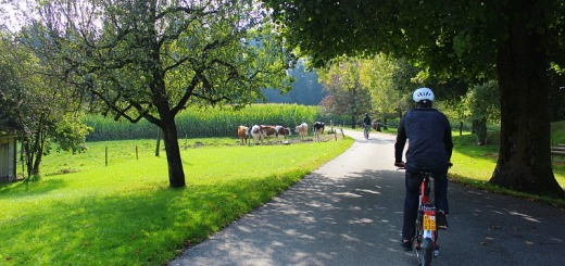 switzerland-emmental