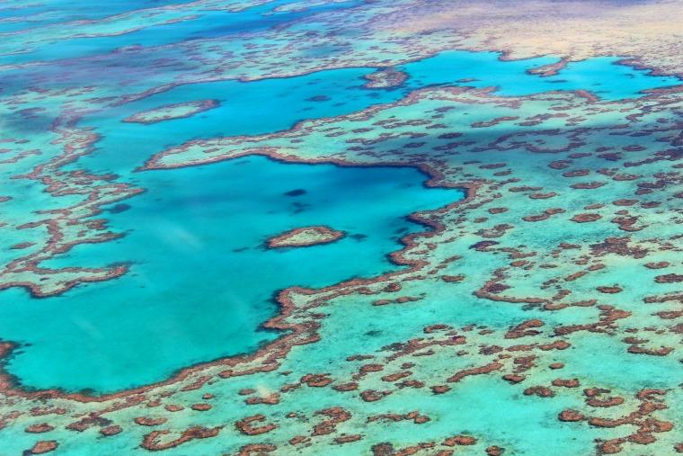australia-gbr-reef