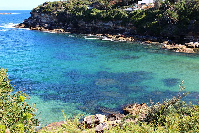 Gordons Bay Sydney coastal walk