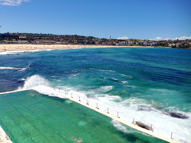 The view from Bondi Icebergs Club