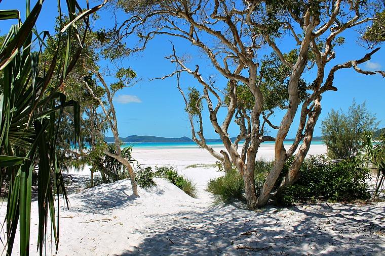 australia-whitsundays-beach