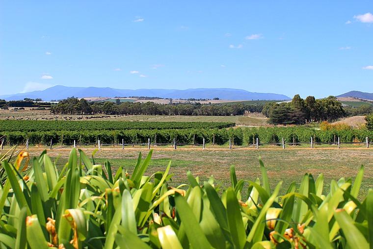 australia-yarra-valley-farm