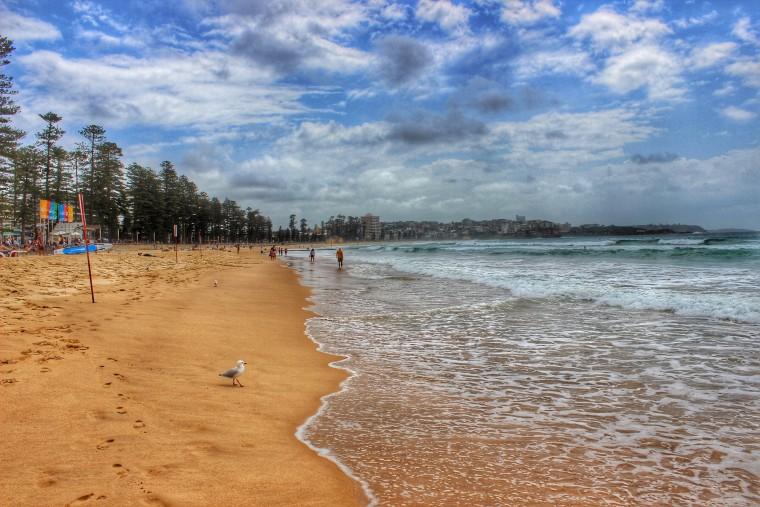 Australia-Sydney-Manly-Beach-landscape