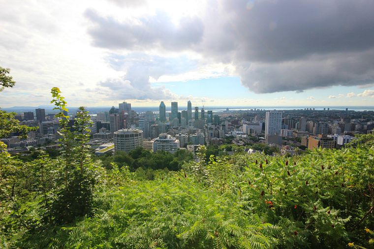 The view of downtown Montreal from Mont-Royal