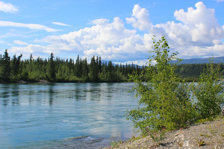 Canada-Yukon-Whitehorse-river