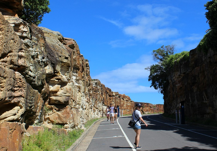 australia-sydney-coastal-walk-courtney-path