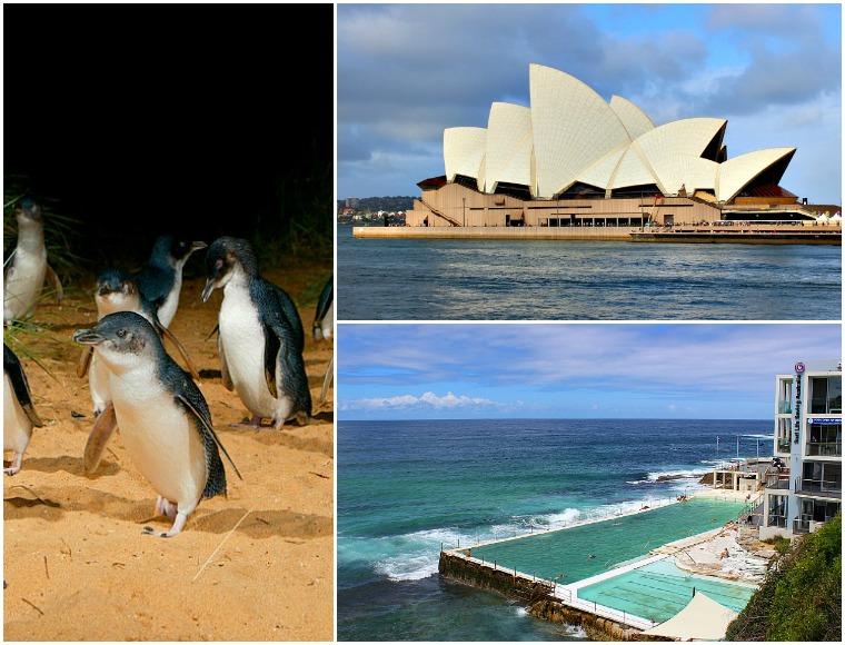 australia collage 2