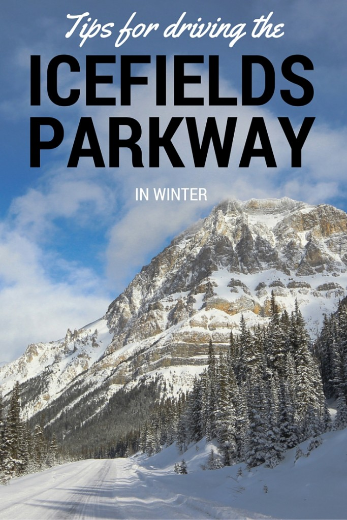 Tips for driving the Icefields Parkway