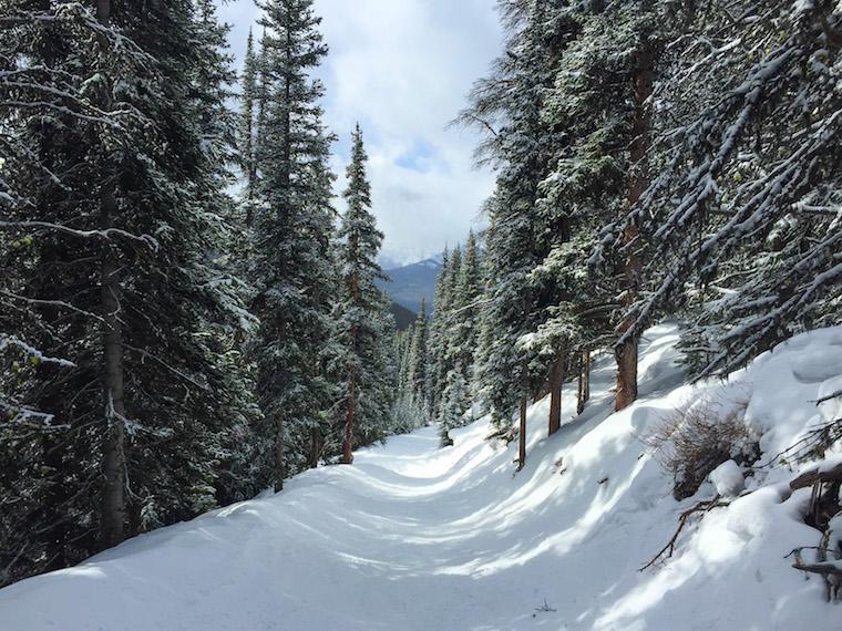 Canada-Alberta-Lake-Louise-Ski-Resort-hill-2