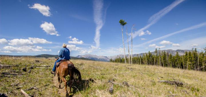 horseback riding sundre alberta