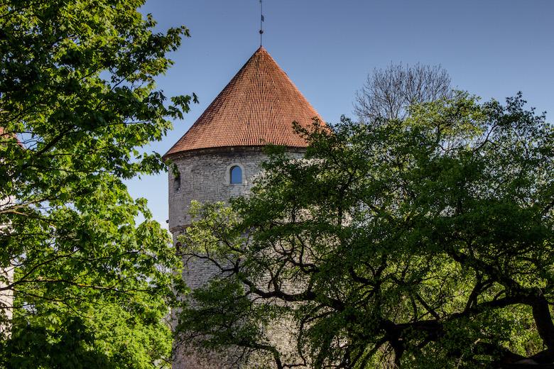 Estonia-Tallinn-Towers-2