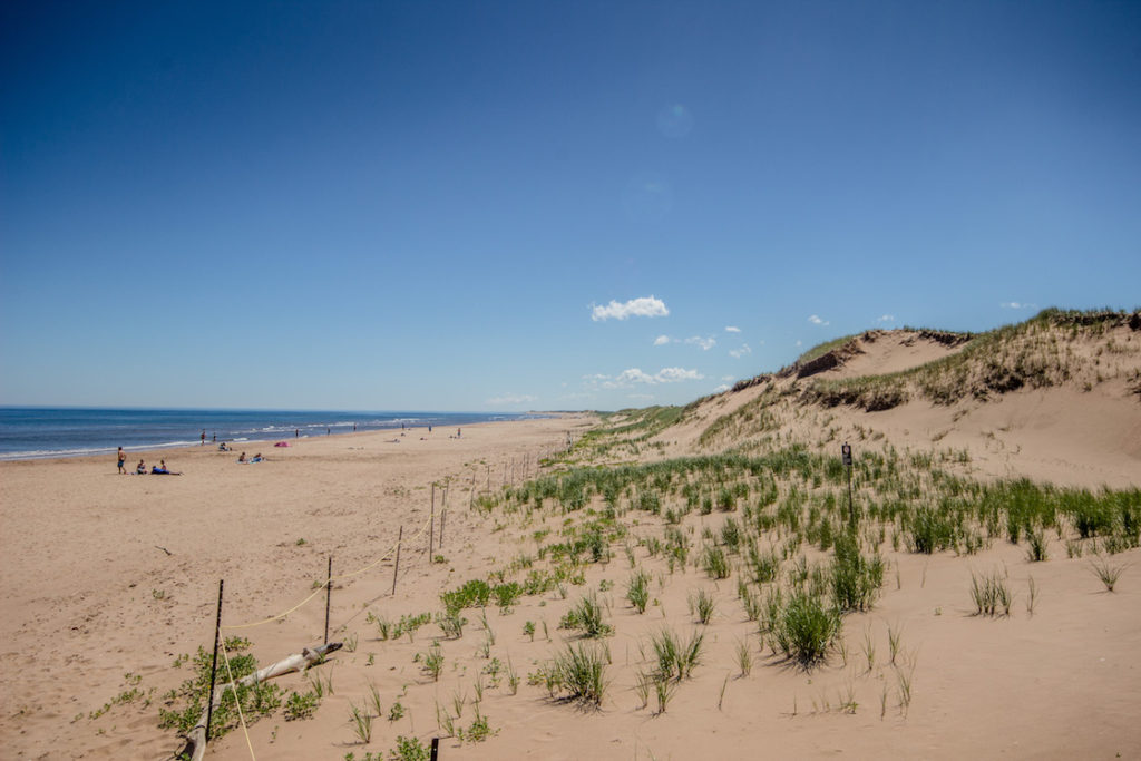 best beaches in prince edward island
