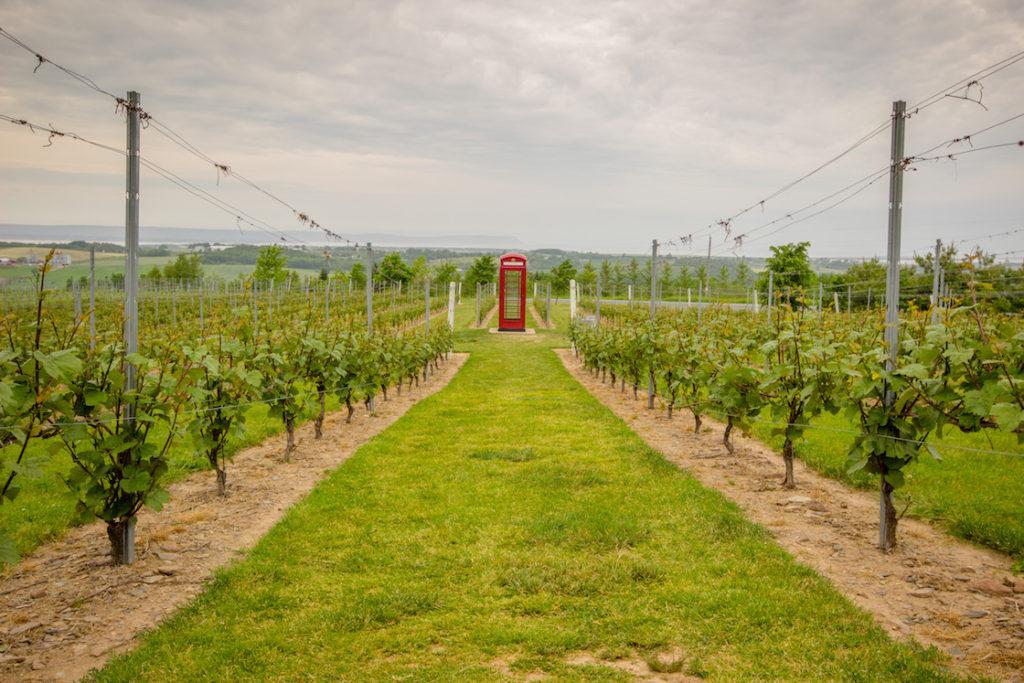 Wolfville, Nova Scotia wineries